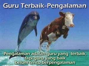 FOTO GAMBAR PP BB UNIK TERBARU Picture Status BB Lucu