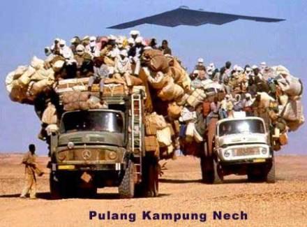 taliban-pindahan